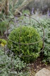 Set of Two Barrington Domed Plant Supports - Large