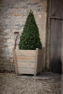 Kingham Planter - Large - H60cm