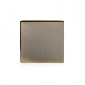 The Charterhouse Collection Aged Brass metal Single Blanking Plate