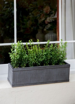 Vence Window Box - Small